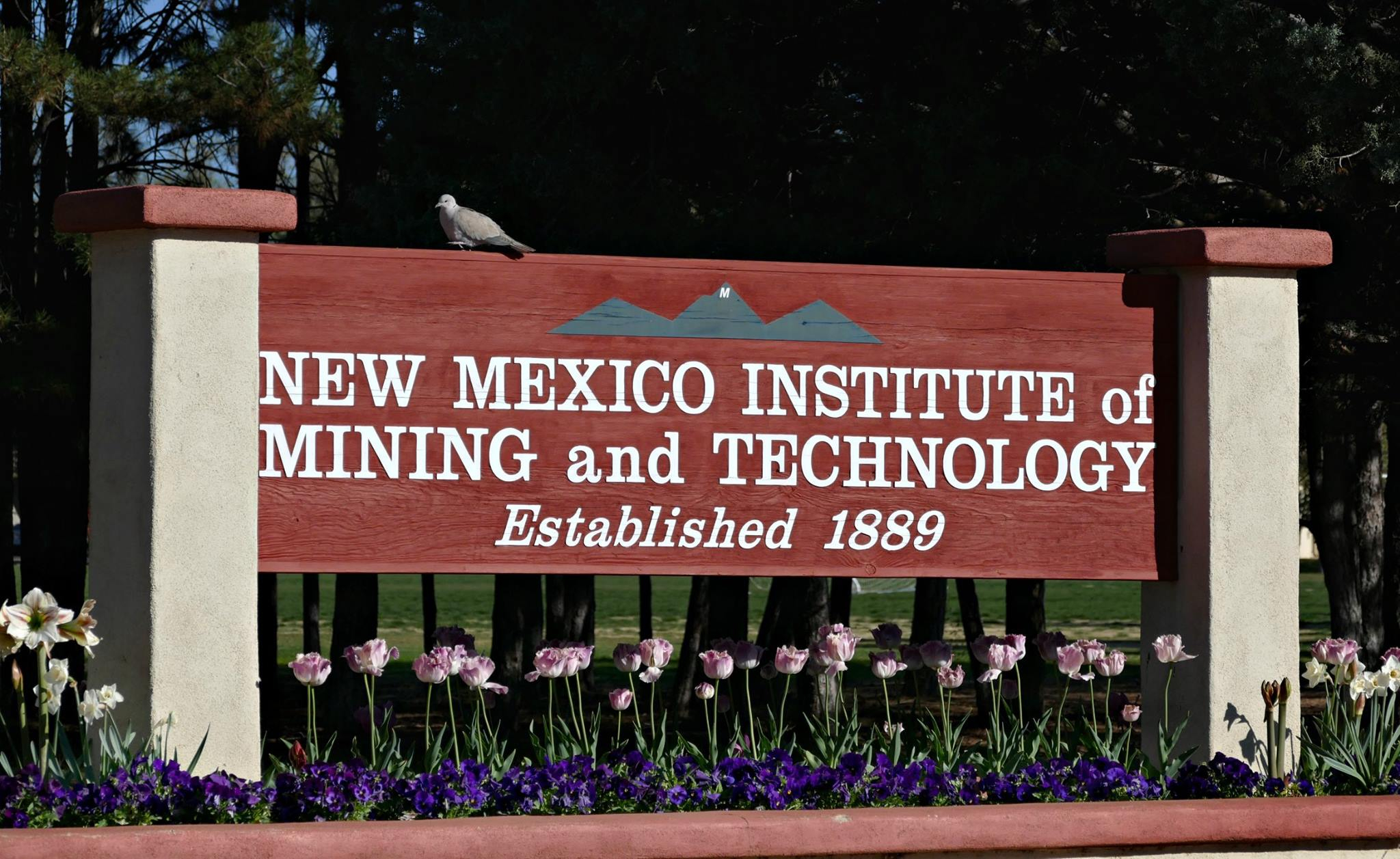 Office of the Registrar: New Mexico Tech