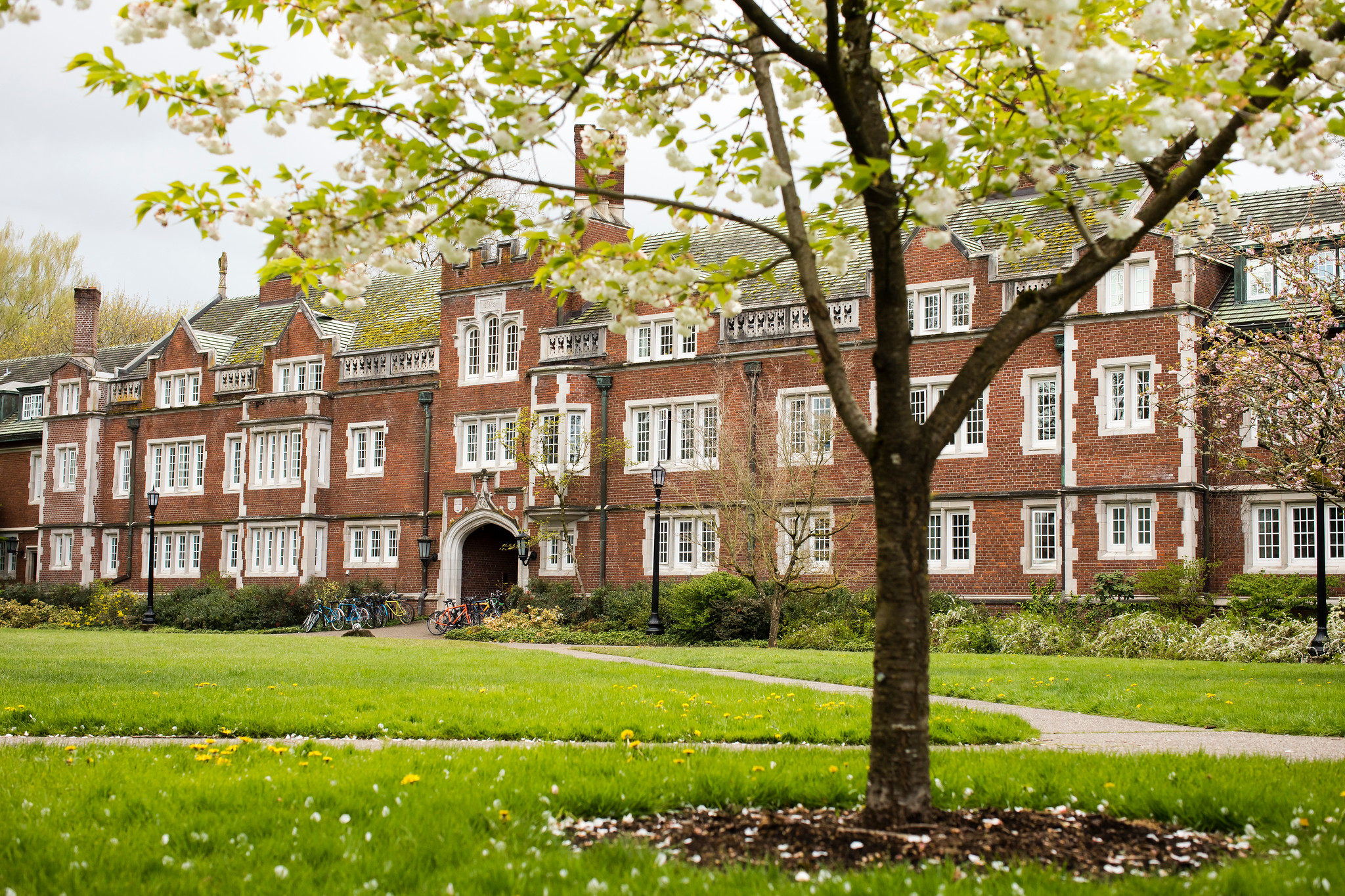Reed College   Student Life   Spring Break Guide for Students